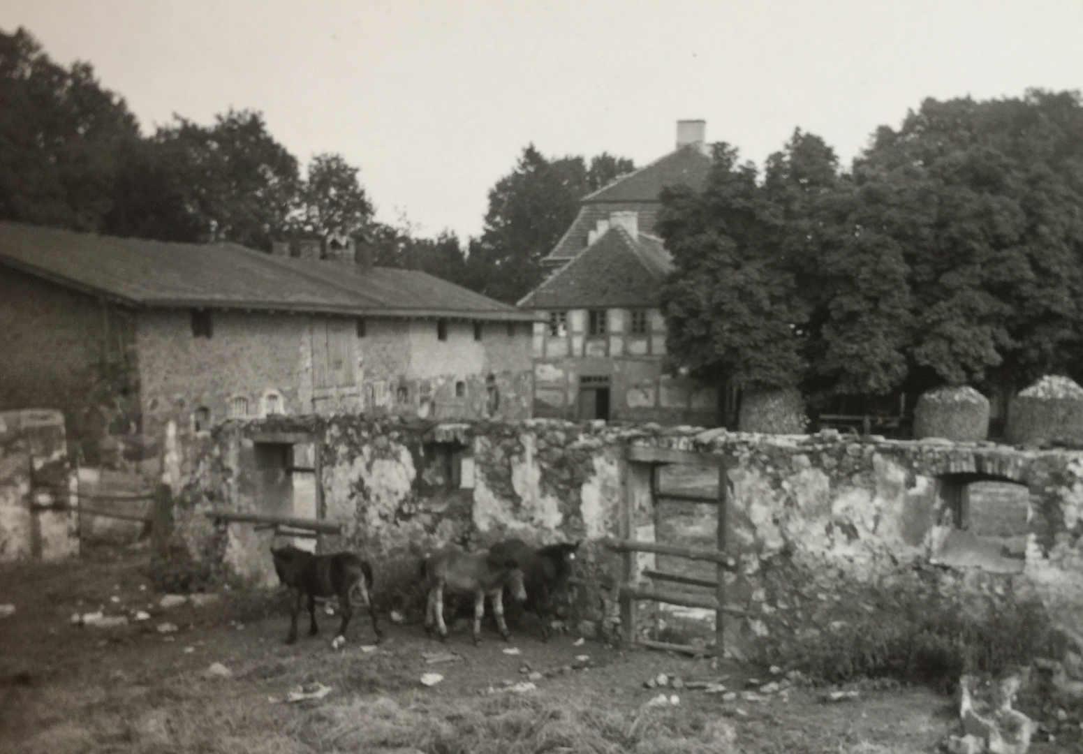 Gutshof-fredenwalde-1930